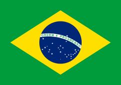 243px-flag_of_brazil-svg
